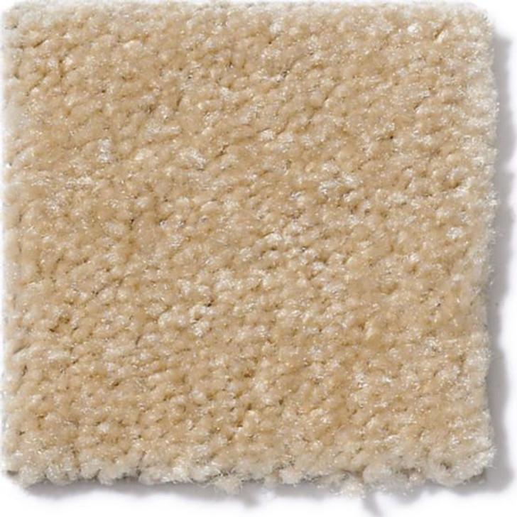 Anderson Tuftex It List Z6570 Residential Carpet