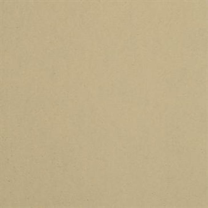 Masland Cache 9408 Nylon Residential Carpet