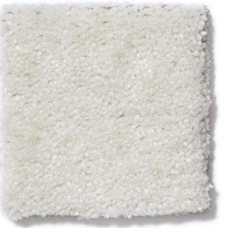 Anderson Tuftex Cabretta Z0695 Residential Carpet