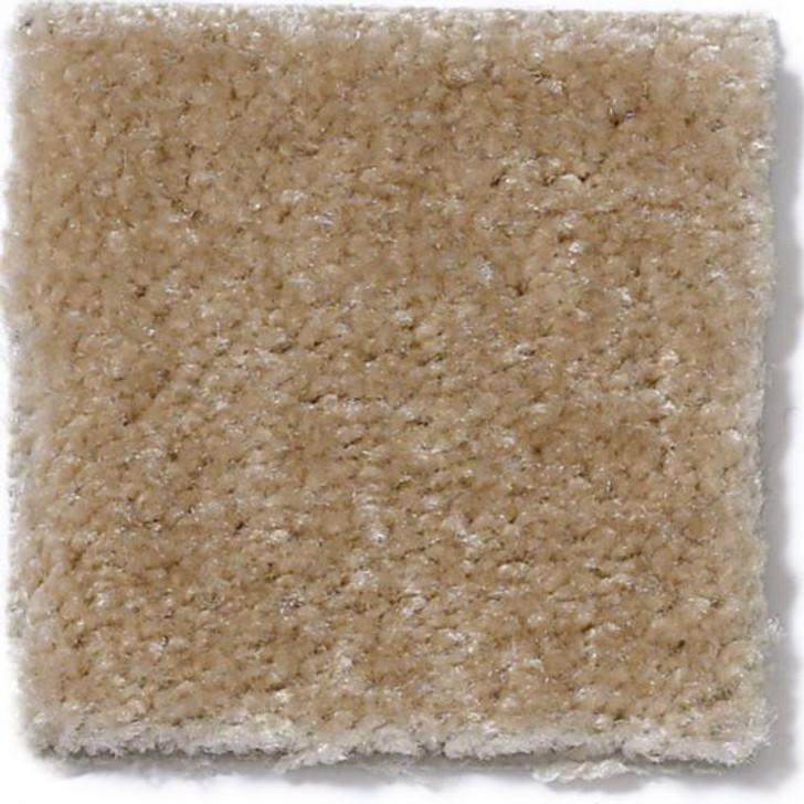 Anderson Tuftex Cabretta II Z6906 Residential Carpet
