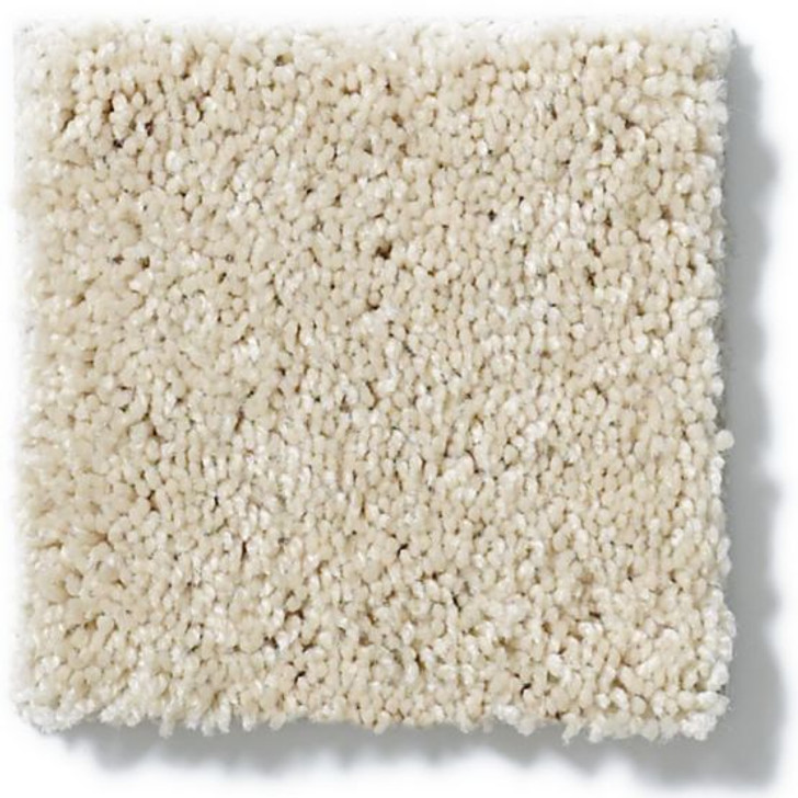 Anderson Tuftex Ravishing Z6866 Residential Carpet
