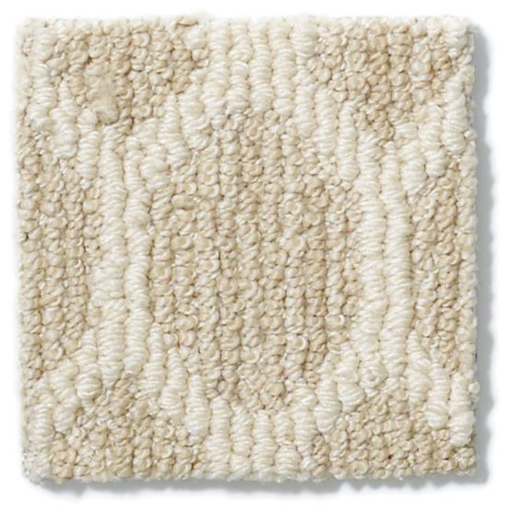 Anderson Tuftex Tracery Z6878 Residential Carpet