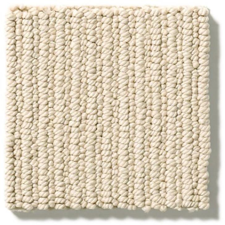 Anderson Tuftex Dynasty ZZ096 Residential Carpet