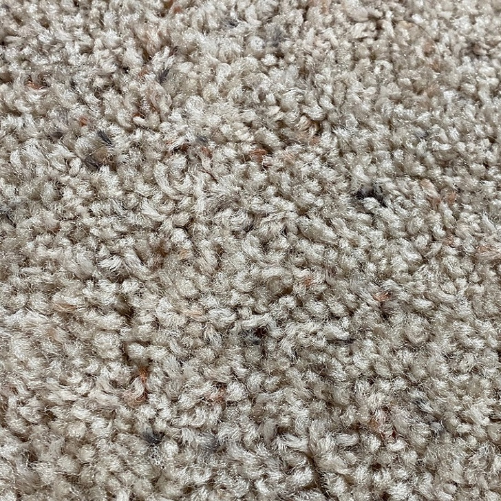 Shaw Sonoran 408 Square Feet Residential Carpet Final Sale