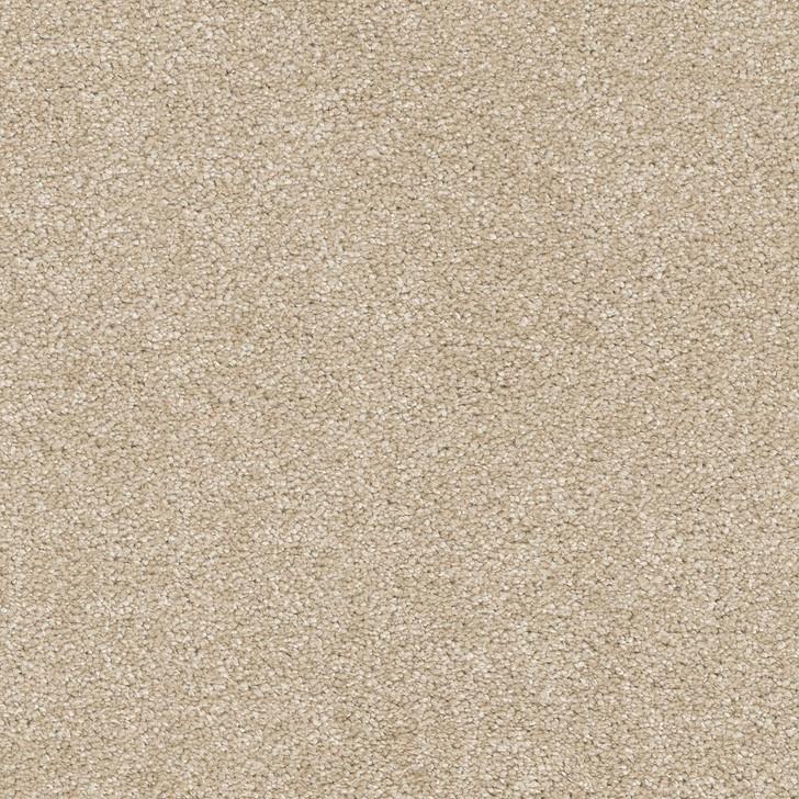 Dreamweaver Brazen I 6240 Residential Carpet