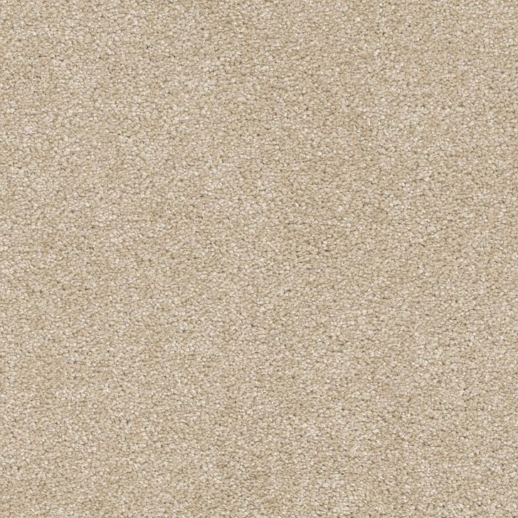 Dreamweaver Brazen II 6260 Residential Carpet