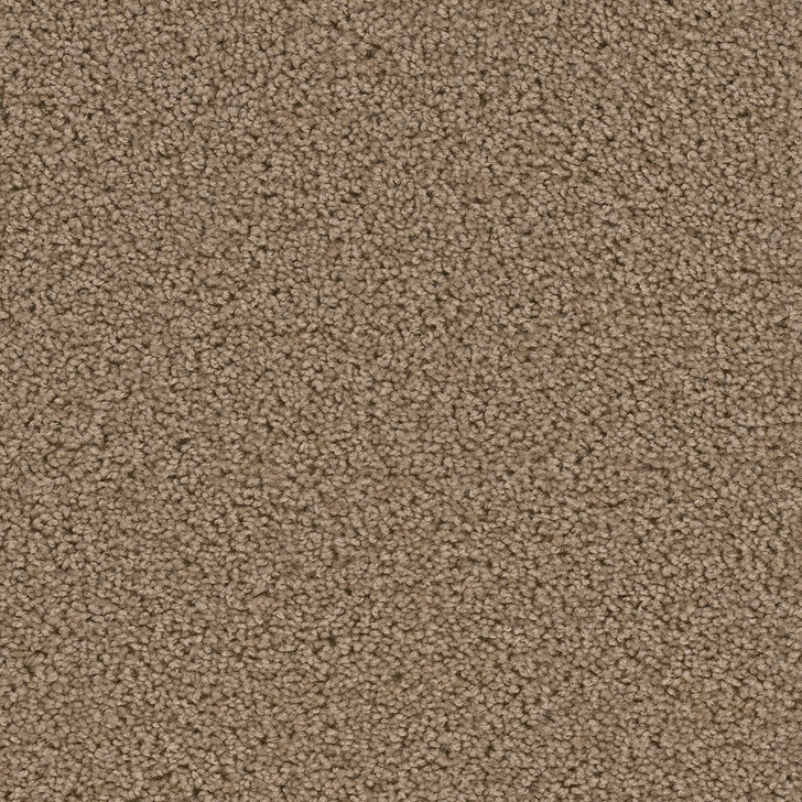 Dreamweaver Broadcast 3025_945 Residential Carpet