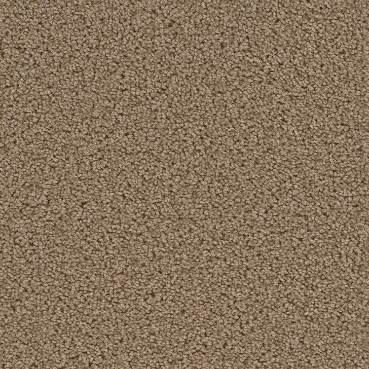Dreamweaver Broadcast 3025_945 Residential Carpet