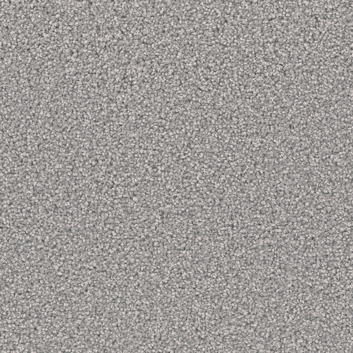 Dreamweaver Broadcast Plus 3125_945 Residential Carpet