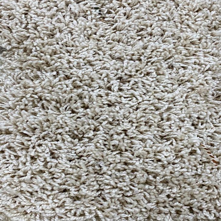 Phenix Palo Duro Summer Straw 390 Square Feet 50 oz. Residential Carpet Final Sale FREE SHIPPING