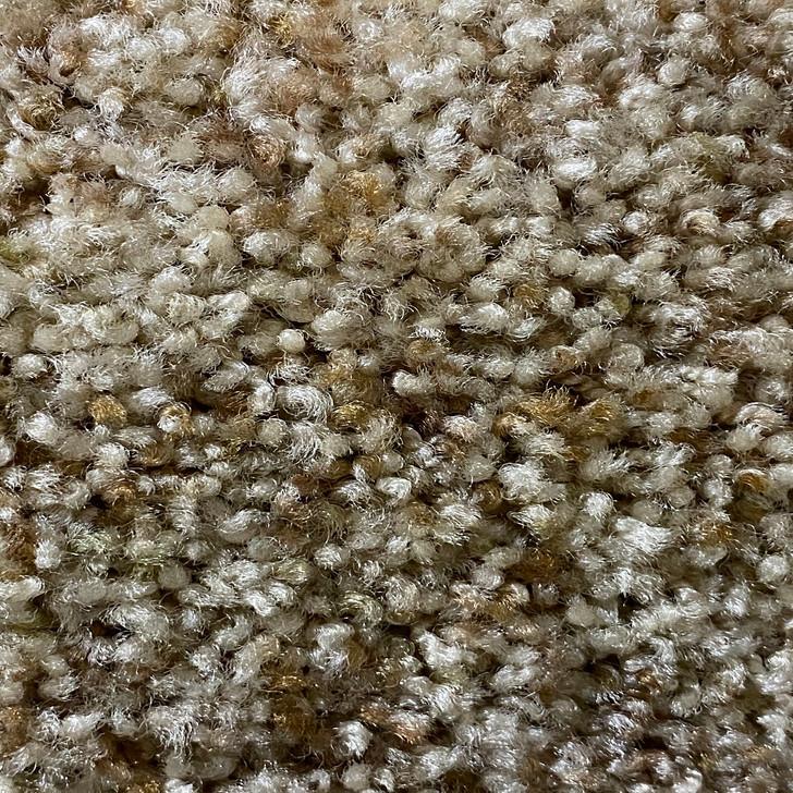 Beaulieu Zimbabwe Laurel 444 Square Feet 50 oz. Residential Carpet Final Sale FREE SHIPPING