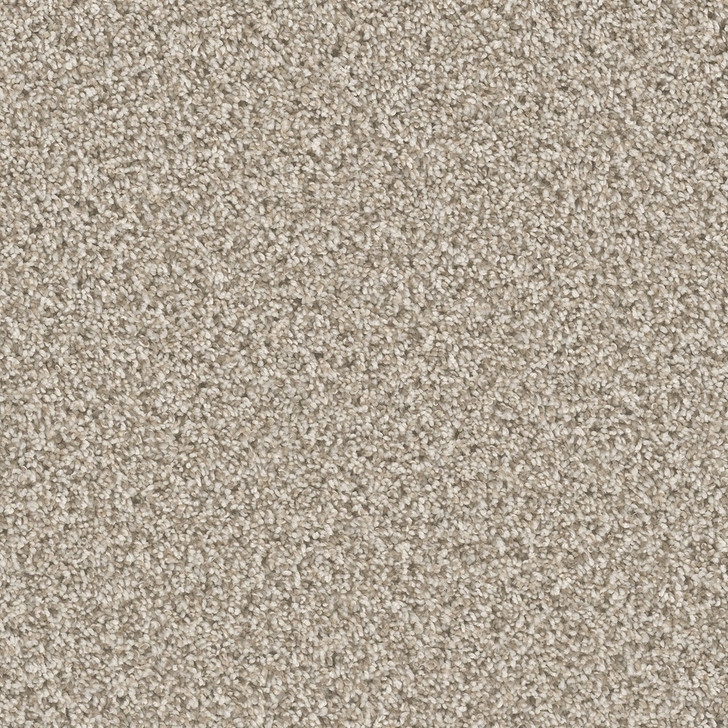 Dreamweaver Can't Miss 4748_824 Residential Carpet