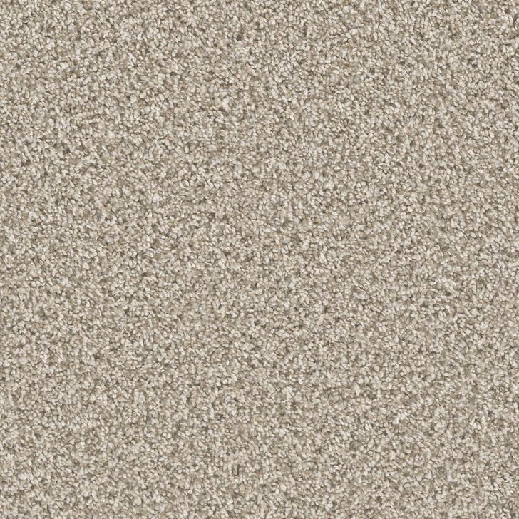 Dreamweaver Can't Miss 4748_824 Residential Carpet