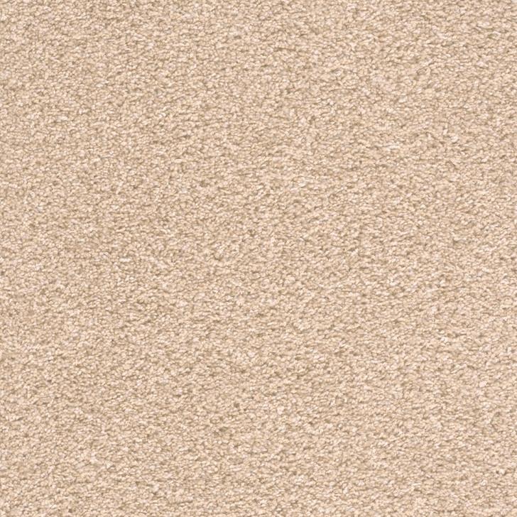 Dreamweaver Showtime 3130_956 Residential Carpet