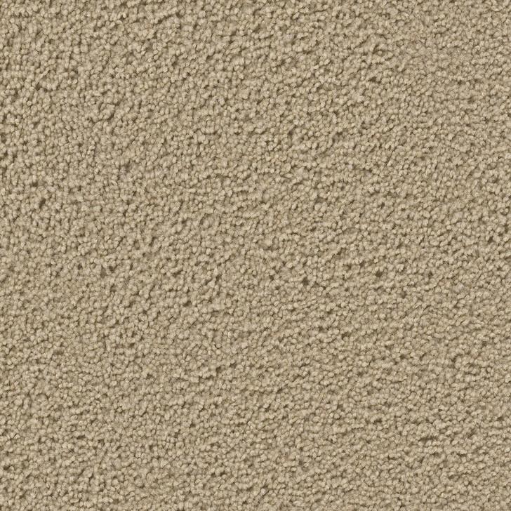 Dreamweaver Impact 9225 Residential Carpet