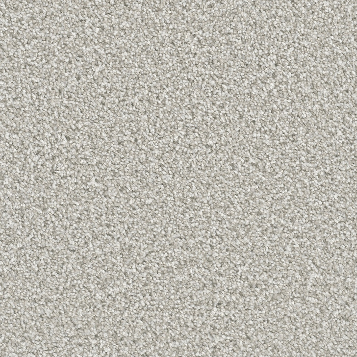 Dreamweaver Dazzling 4775_959 Residential Carpet