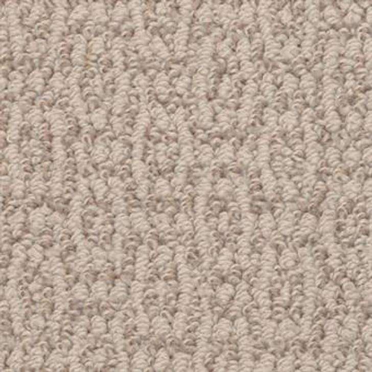 Masland Crochet Elegance 9529 StainMaster Residential Carpet