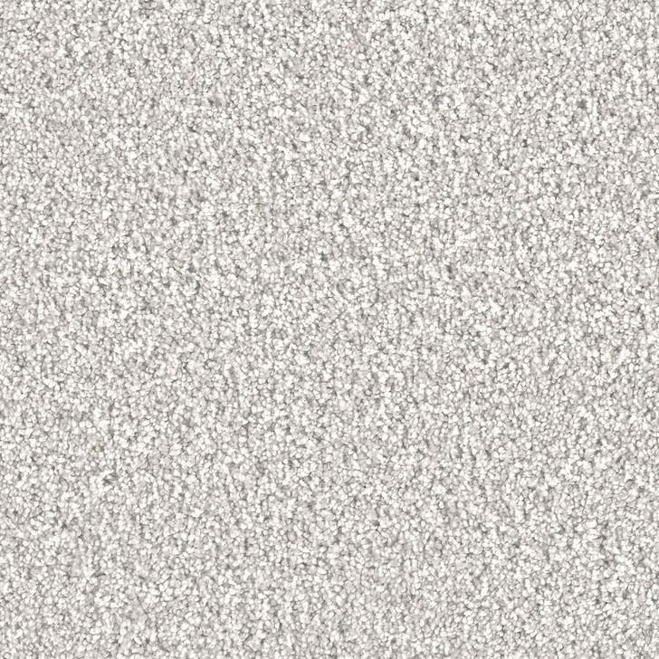 Dreamweaver Stunning 4765_959 Residential Carpet