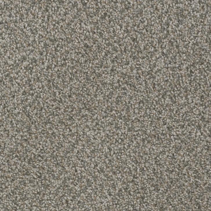 Dreamweaver Hot Pursuit 1424_433 Residential Carpet