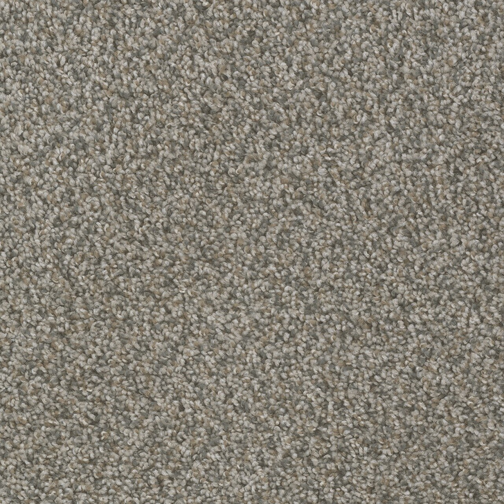 Dreamweaver Hot Pursuit 1424_433 Residential Carpet