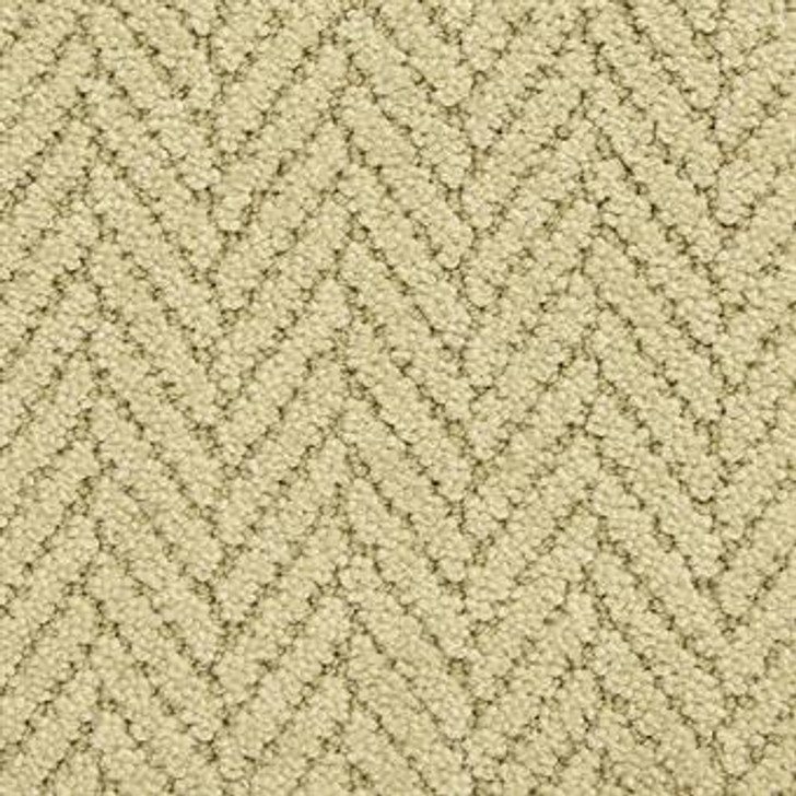 Masland Distinguished 9559 StainMaster Residential Carpet