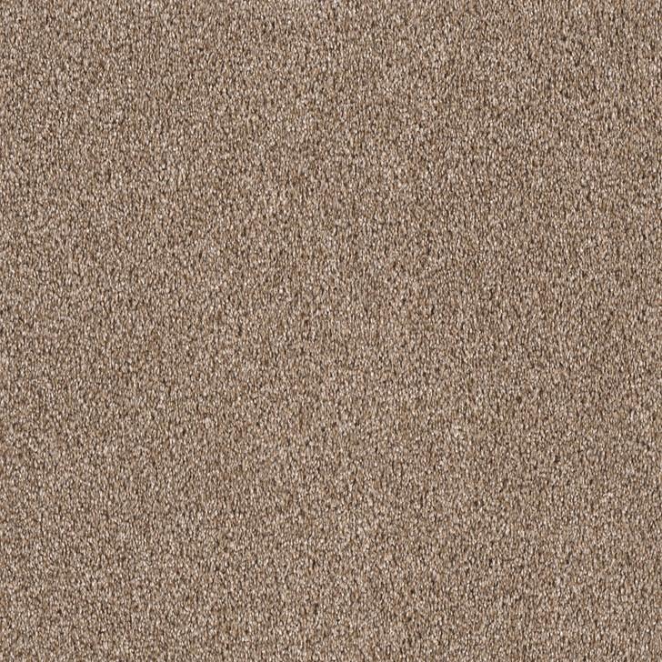 Dreamweaver Festival 6545_678 Residential Carpet