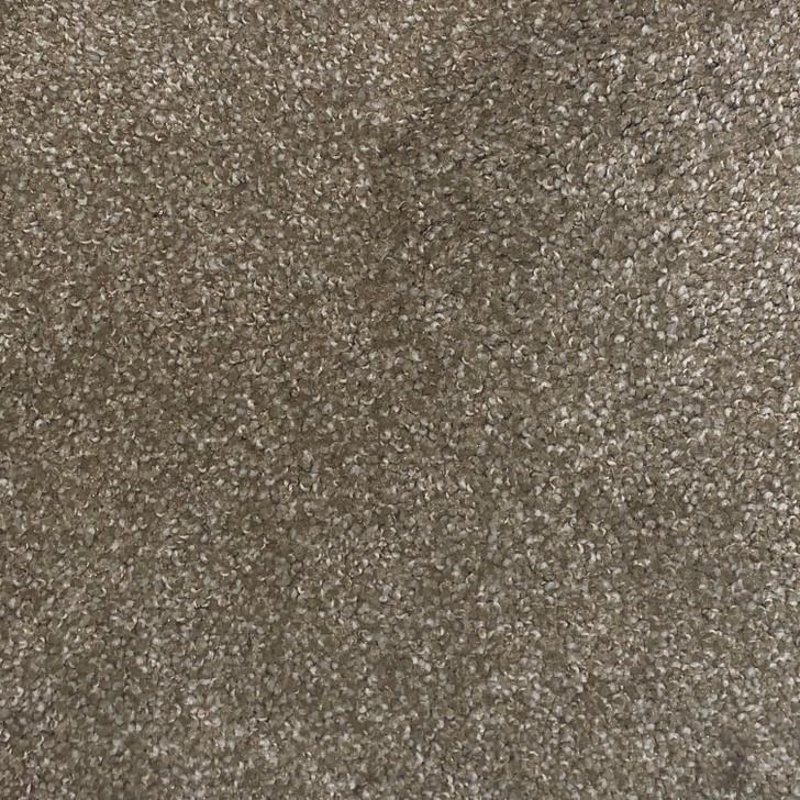 Shaw Caress Pashmina I Panama 1469 Square Feet 45 oz. Residential Carpet Final Sale FREE SHIPPING
