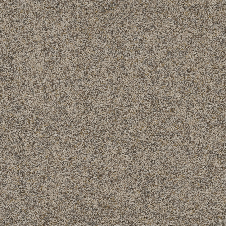 Dreamweaver Piece of Cake SQ106 Residential Carpet