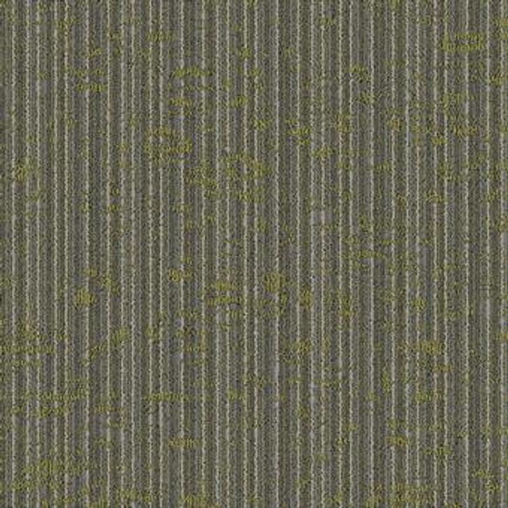Masland Dynamic-Tile T9603 Nylon Residential Carpet