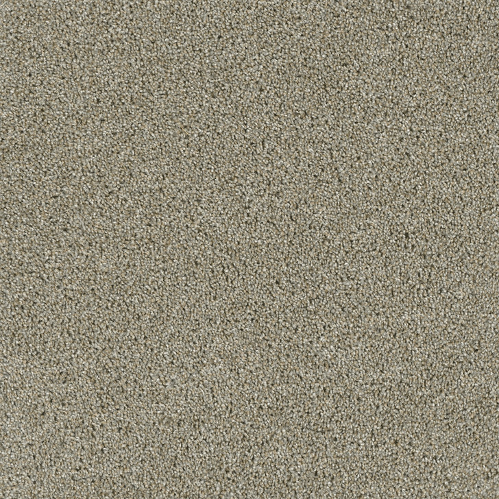 Dreamweaver Yellowstone 4330 Residential Carpet