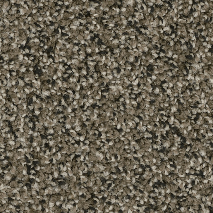 Dreamweaver West Brow 6035 Residential Carpet