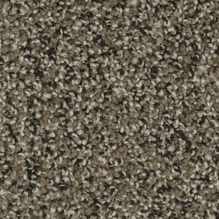 Dreamweaver West Brow 6035 Residential Carpet