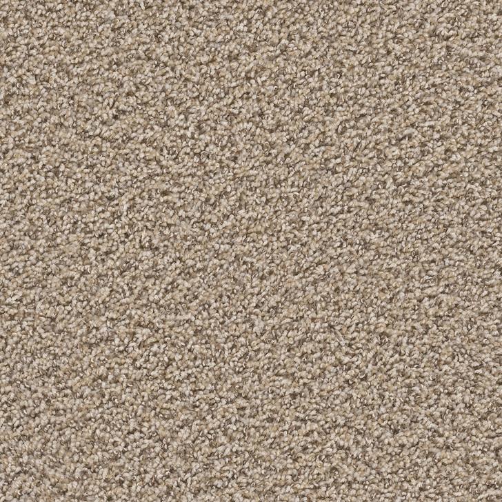 Dreamweaver Untouchable 9125 Residential Carpet