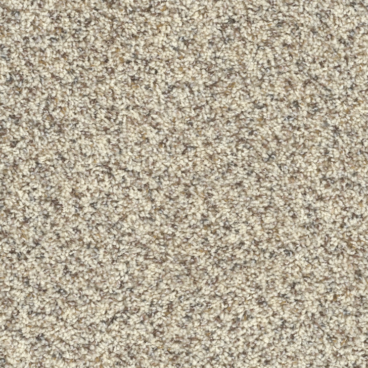 Dreamweaver Toast of the Town 5315 Residential Carpet