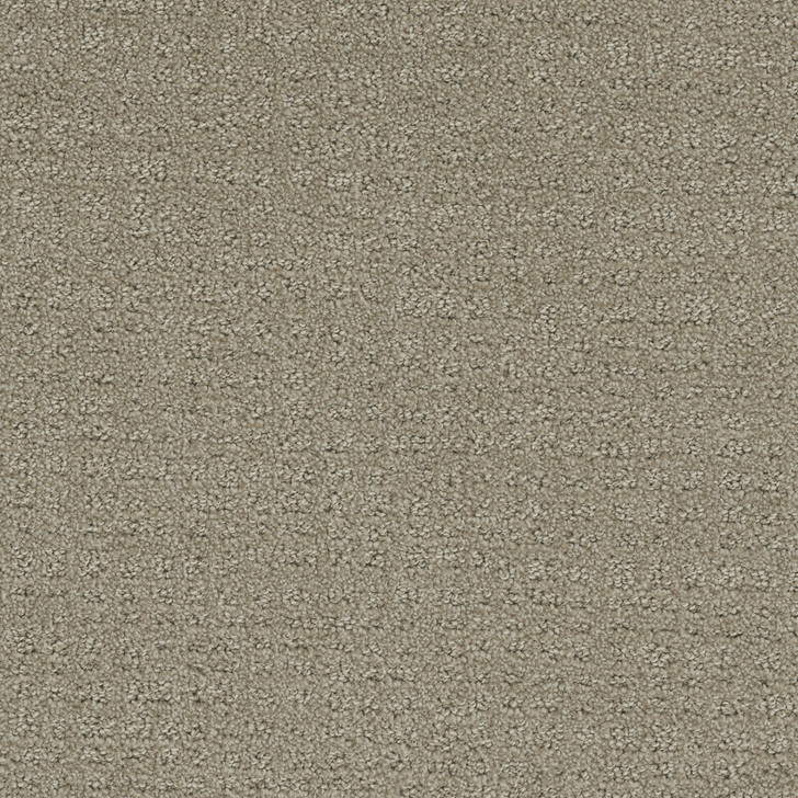 Dreamweaver Common Ground 2845 Residential Carpet