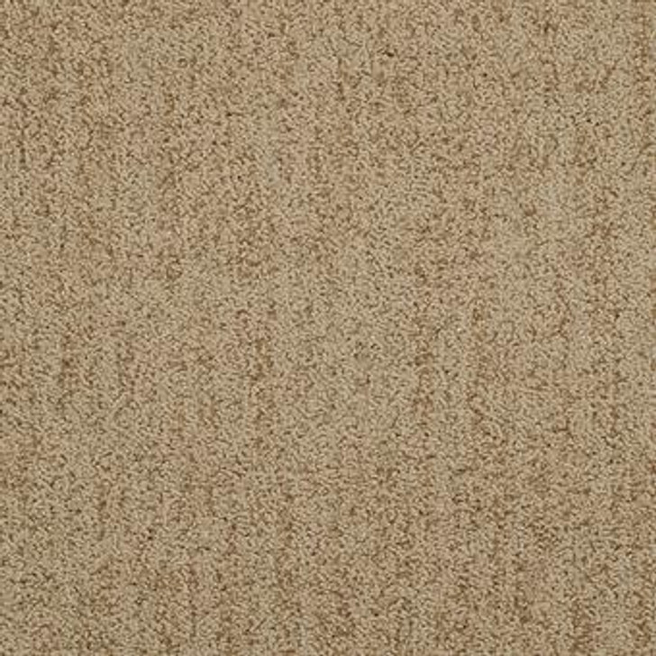 Masland Firenze 9494 StainMaster Residential Carpet