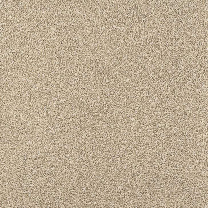 Dreamweaver Montauk 2560 Residential Carpet