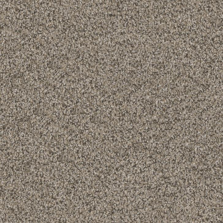 Dreamweaver Double Jump I 1735 Residential Carpet