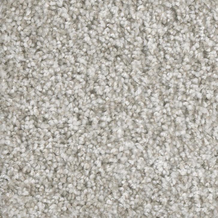 Dreamweaver Knockout I 4645 Residential Carpet