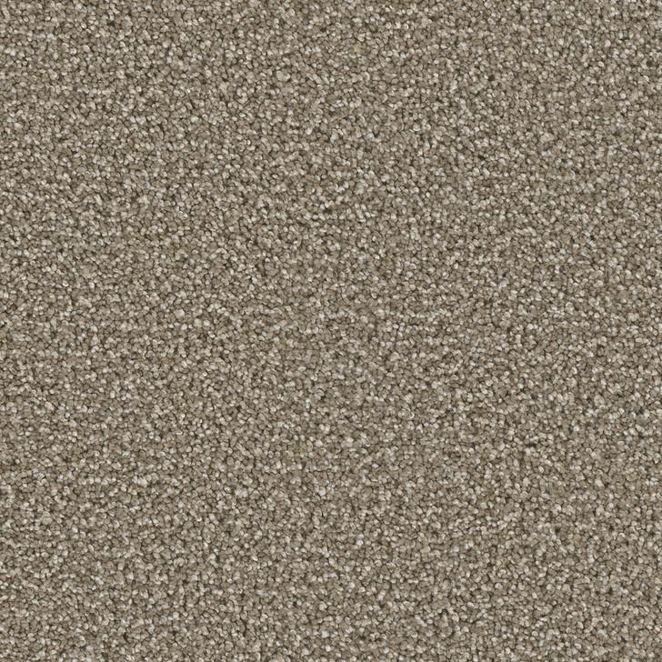 Dreamweaver Cosmopolitan 5755 Residential Carpet