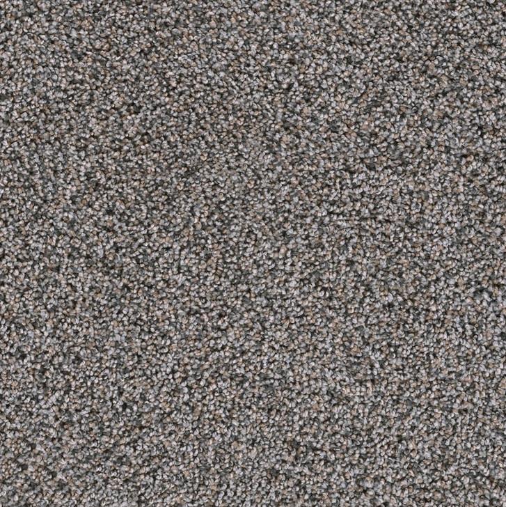Dreamweaver Trendsetter II 3655 Residential Carpet