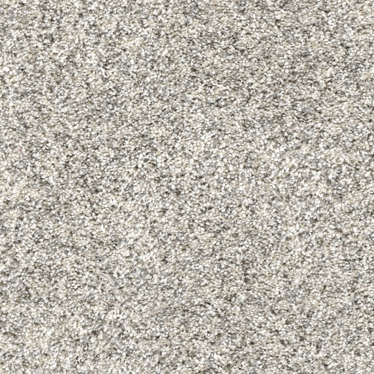 Dreamweaver Confetti II 3148 Residential Carpet