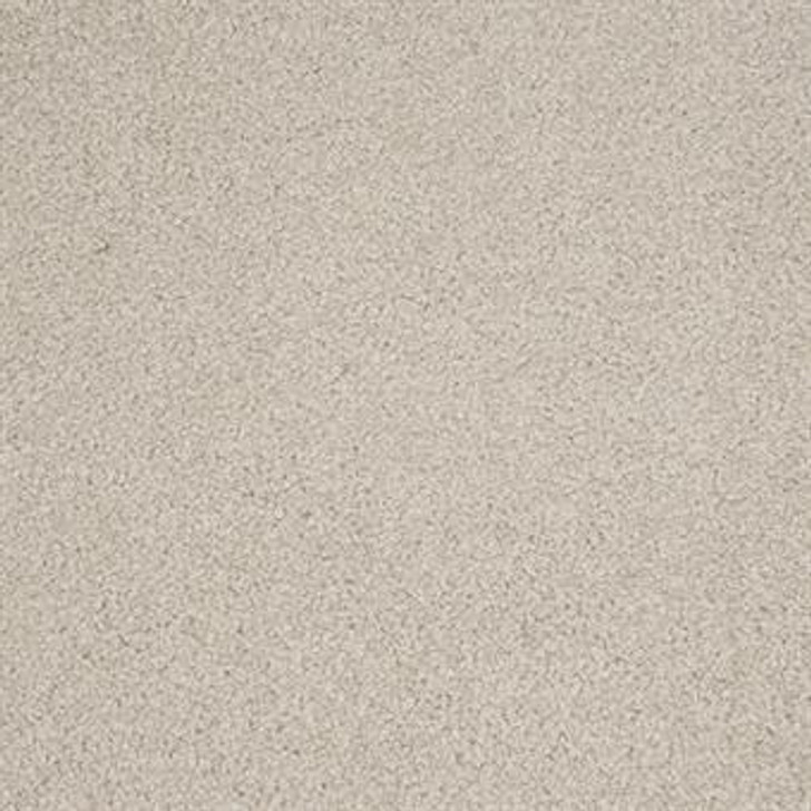 Masland Harbor Town 9635 Nylon Residential Carpet