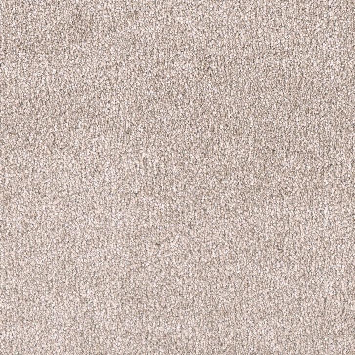 Dreamweaver Showstopper II 5650 Residential Carpet