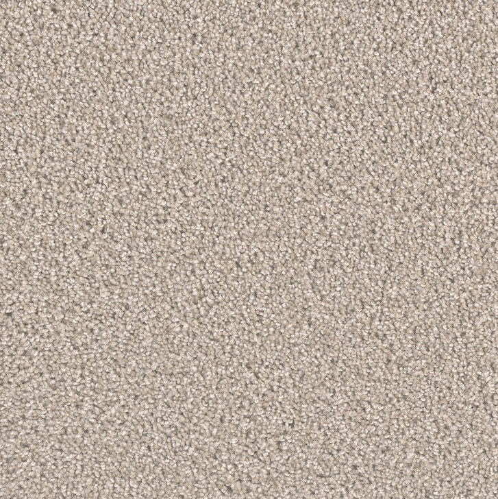 Dreamweaver Exceptional II 7404 Residential Carpet