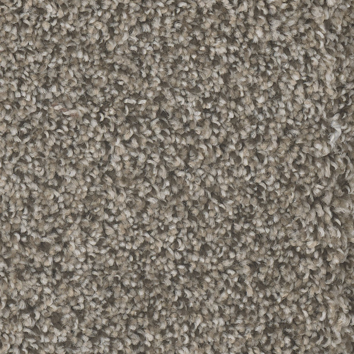 Dreamweaver Jackson Hole I 7543 Residential Carpet