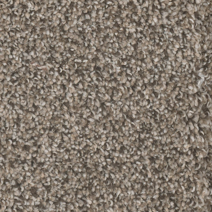 Dreamweaver Jackson Hole II 7560 Residential Carpet