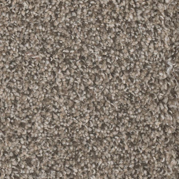 Dreamweaver Jackson Hole II 7560 Residential Carpet