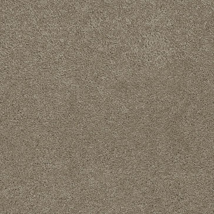 Dreamweaver Rock Solid I 4345 Residential Carpet
