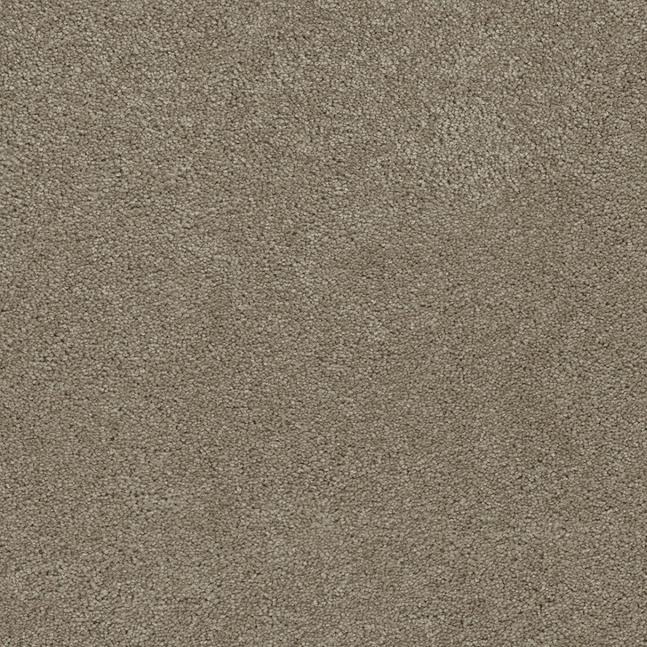 Dreamweaver Rock Solid III 4365 Residential Carpet